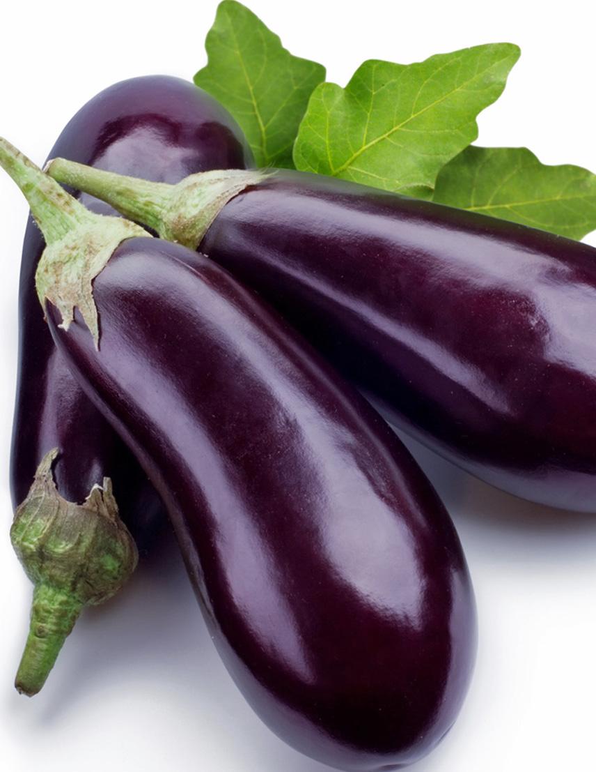 eggplant-leb.jpg
