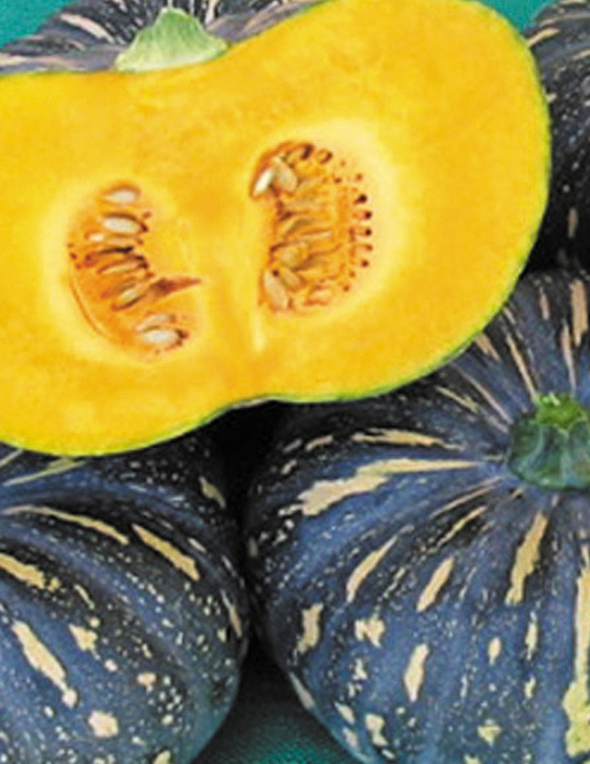 jap-pumpkin.jpg