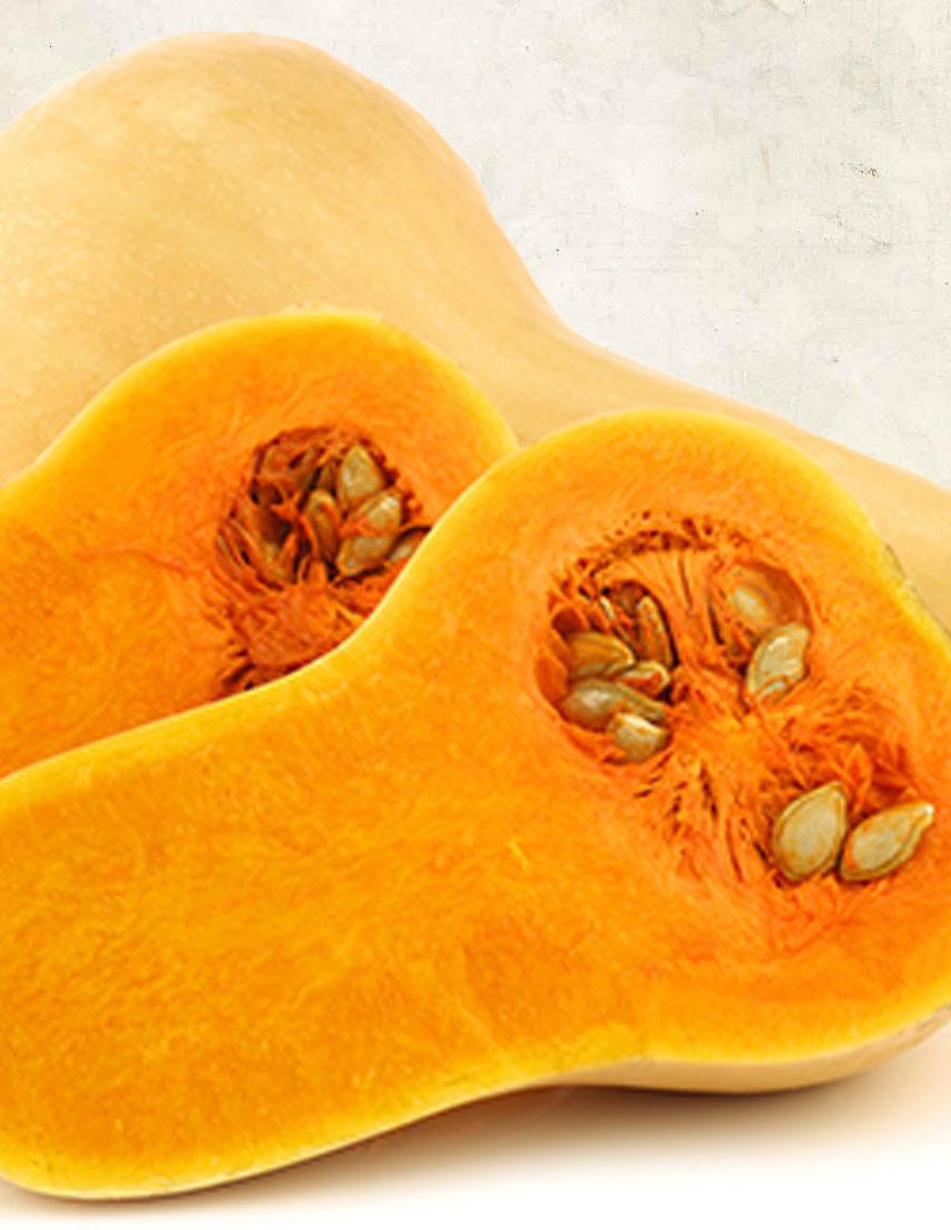 butternut-pumpkin.jpg