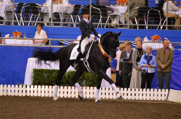 Susan Elekessy & Don Rubin- Callum Park Equestrian