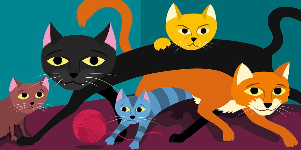 Atte katte noa , til boka  Atte katte noa som kommer ut på Fortellerforlaget i august 2016.