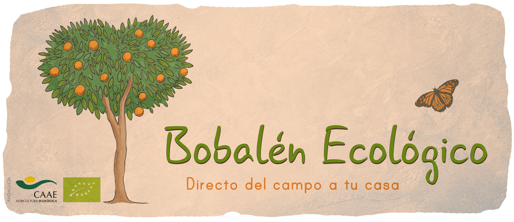 banner-bobalen-mariposa.jpg