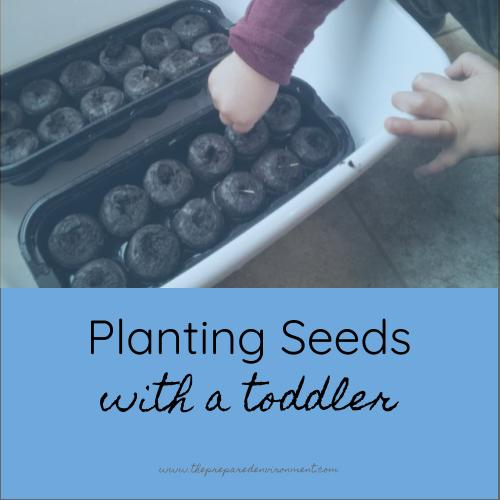 Planting Seeds with a Toddler.jpg