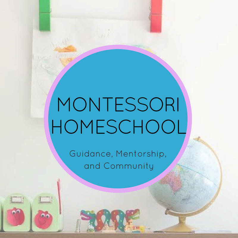 Montessori Homeschool: guidance, mentorship, and community
