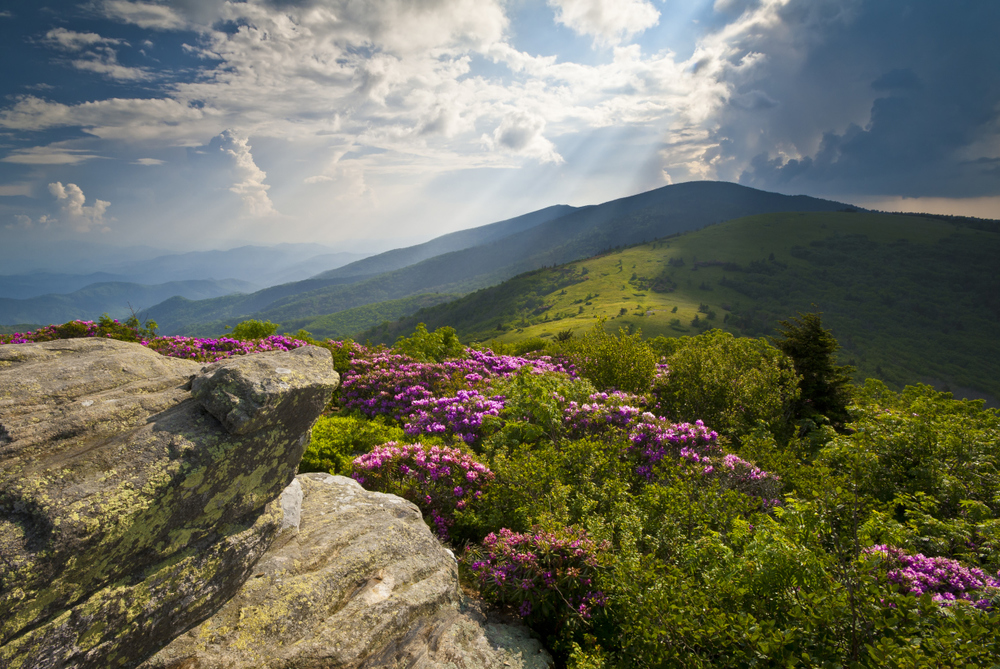 The Great Smokey Mountains of Western North Carolina