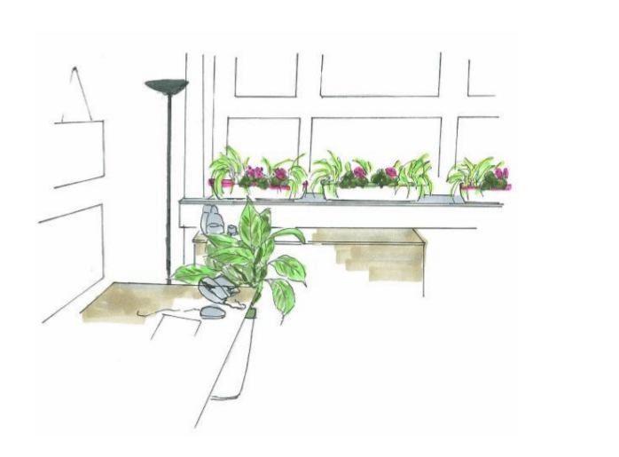 indoor green rabbit. Black Bedroom Furniture Sets. Home Design Ideas