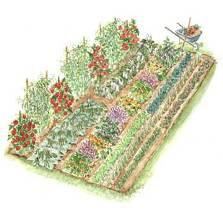 p_vegetable_garden.jpg