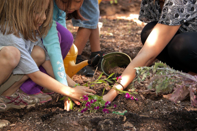Teaching Kids to Garden — Bob\'s Market and Greenhouses