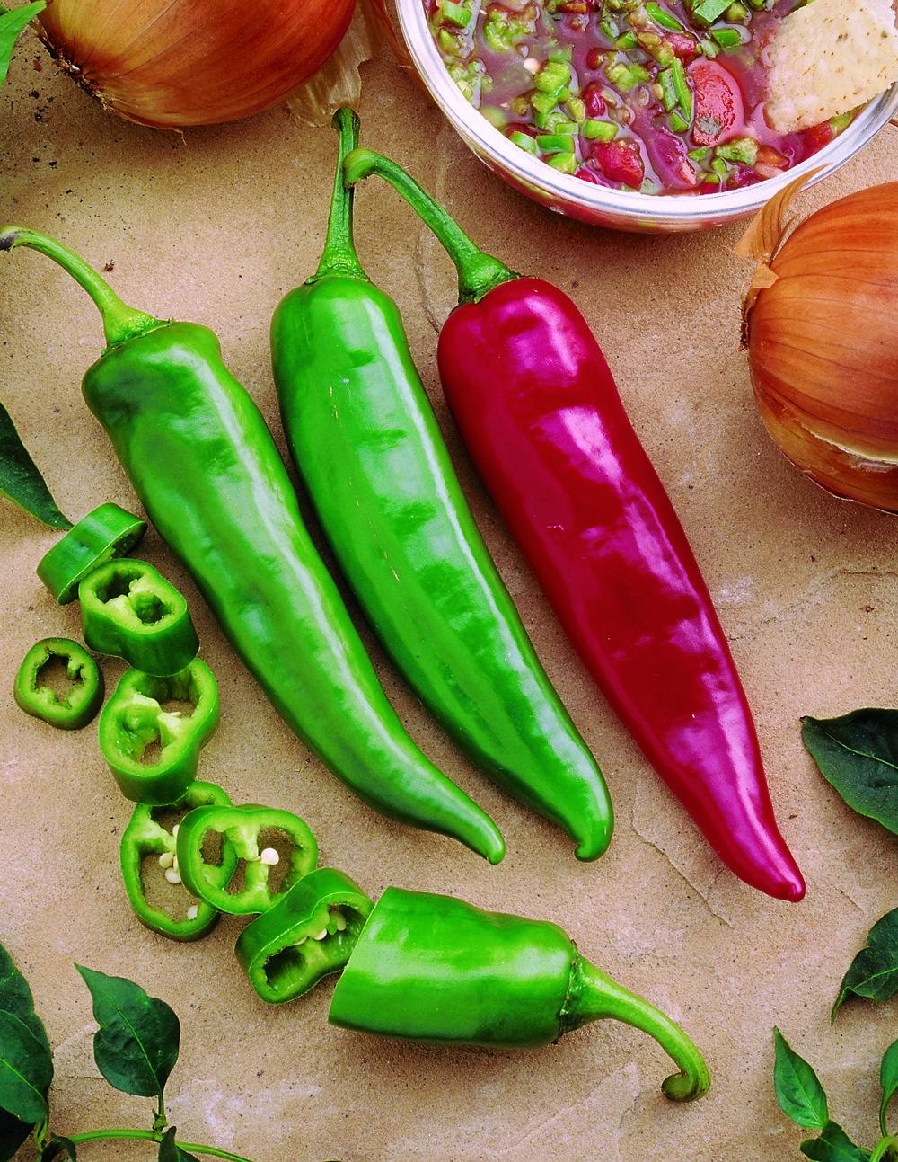 Pepper Garden Salsa (HOT)