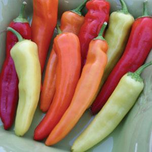 Pepper Hungarian Wax (HOT)