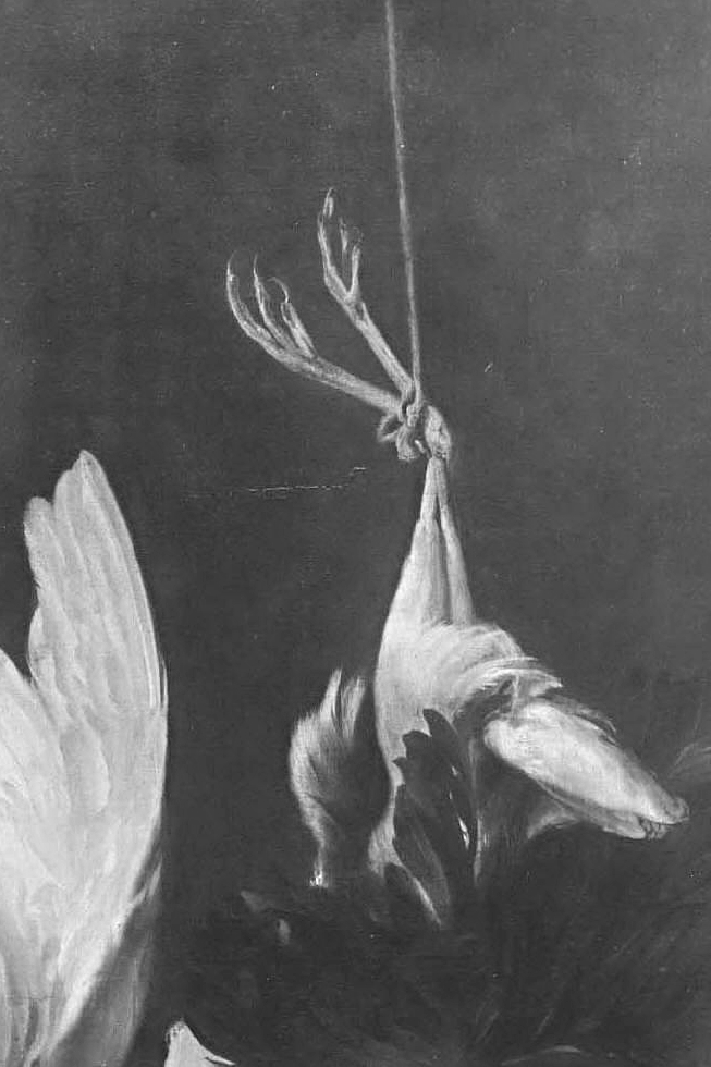Elias-Vonck-Still-Life-with-Dead-Heron-and-Swan-not-dated-painting-artwork-print.jpg
