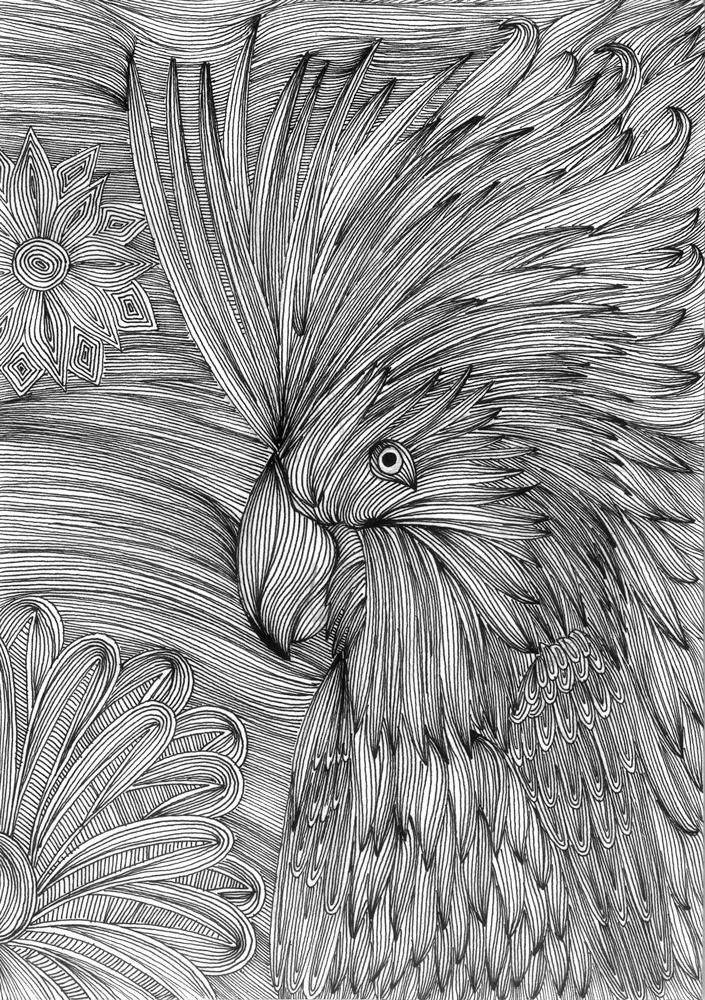 BIRD_03.jpg