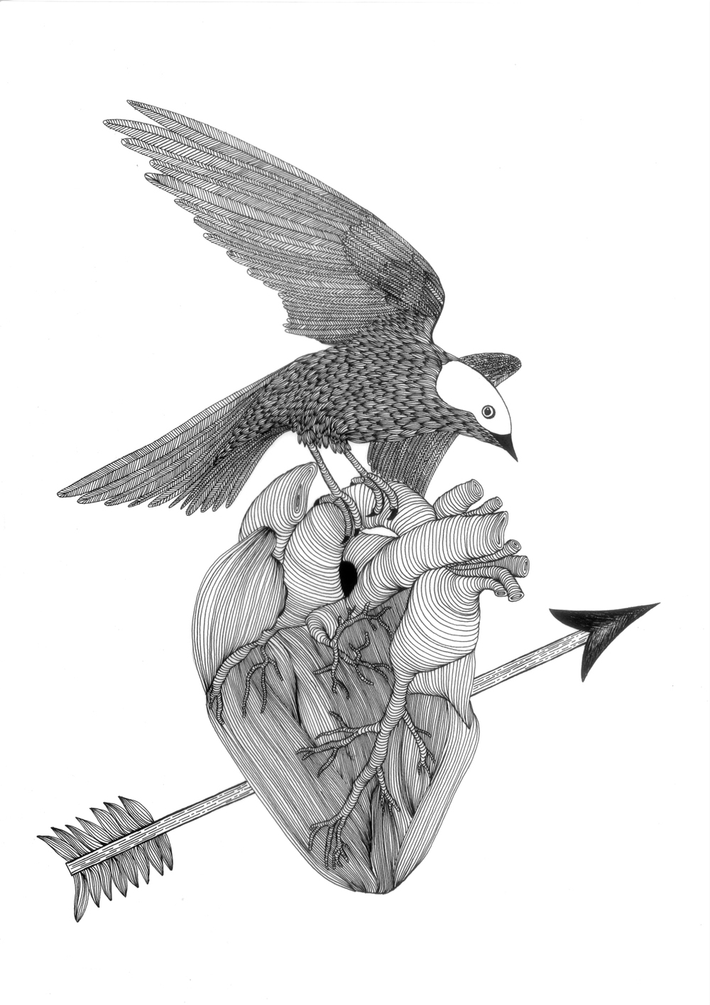 HEART_BIRD.jpg