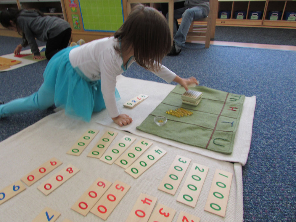 The Primary 3 students use the Golden Bead decimal system material, an iconic Montessori Math material, to associate numbers and quantities and learn place value.