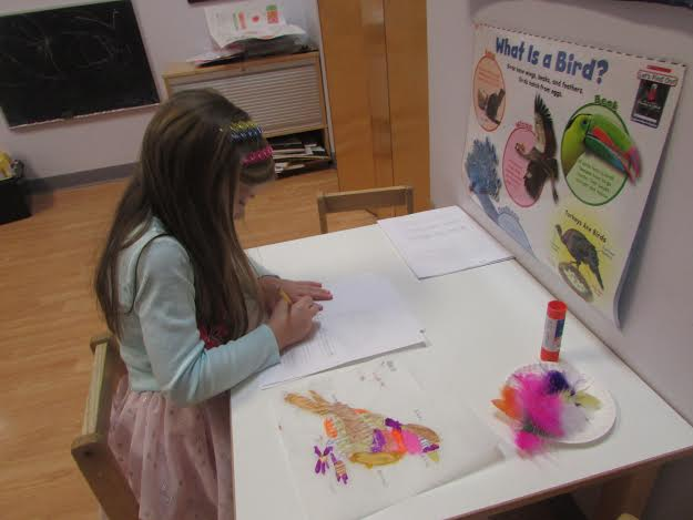 A Primary 2 Kindergarten student worked on a project about birds.  First, she conducted research about birds from different books, and then she copied the information and drew the birds she liked on her paper.  This project helped her to learn more about the life cycles of birds and the parts of their bodies.