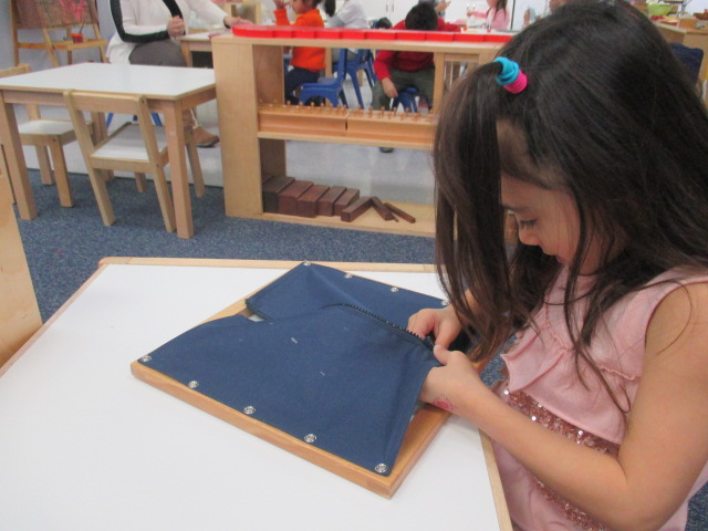 Children become independent when given an opportunity to do so.  The dressing frames are perfect examples of Montessori materials that foster independence.  A Primary 1 student worked on the Zipper Frame.