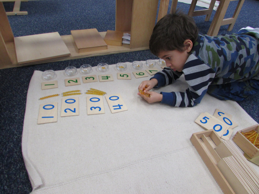 The Golden Bead Layout helps a student to learn place value and associate numbers with quantities.  Many Primary 3 students look forward to working with this hands-on material, which requires lots of movement.