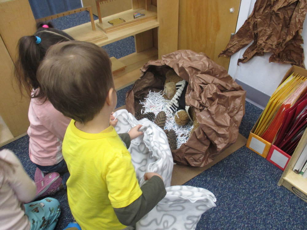 The hibernating bear in the Primary 1 classroom received a blanket from his classroom friends this week to make him more cozy and warm. Learning how to care for others and their environment is part of the curriculum in a Montessori classroom.