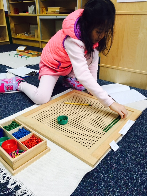 A third grade Lower Elementary West student worked on the peg work as a follow up to the lesson about common and greatest common factors.