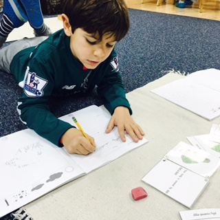 As part of the Zoology curriculum, a Lower Elementary West student learned about the vital functions of amphibians.