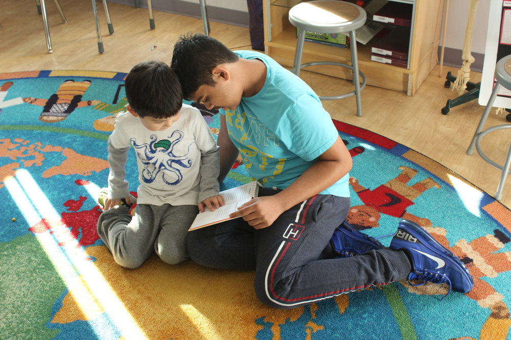The Middle School students hosted their Kindergarten schoolmates for Reading Buddies, and the younger students were inspired by reading to their older friends.