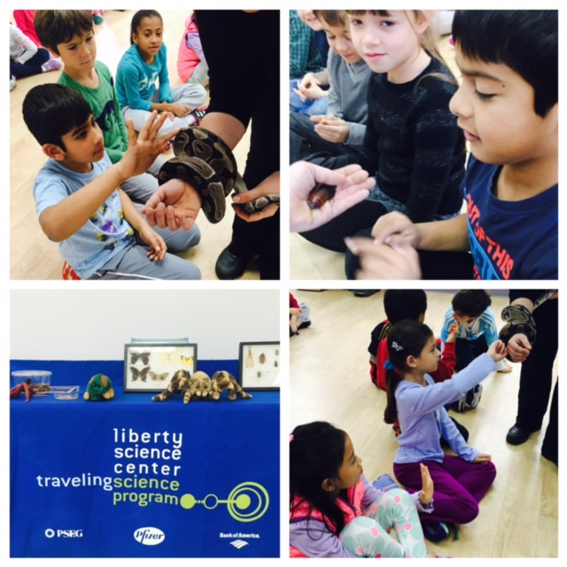 "The Liberty Science Center visited the Lower Elementary West students with a ""Creep Crawly"" presentation.  The educator showed examples of various animals including a Madagascar Hissing Cockroach, a Rose-Haired Chilean Spider and a Ball Snake."