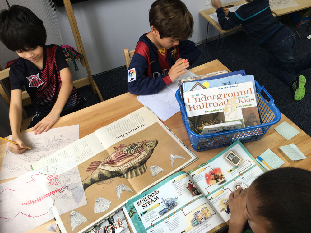 In a Montessori classroom, students work on different follow-ups at any given time.  Second and third grade Lower Elementary West students worked on different extensions while enjoying the company of classmates.