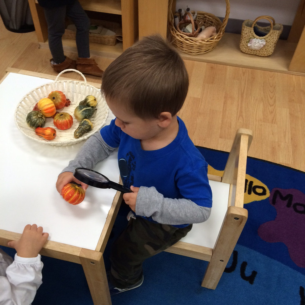 "The puzzle of a magnifying glass in the Toddler 1 classroom:  ""It gets big!"""