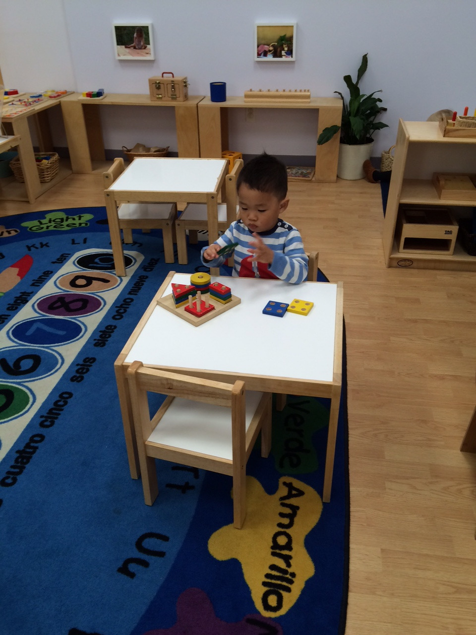 In this work a Toddler 1 student fits one to four holes onto matching posts. This work requires concentration and the child blocked out all other activity in the room while facing the problem for the first time.