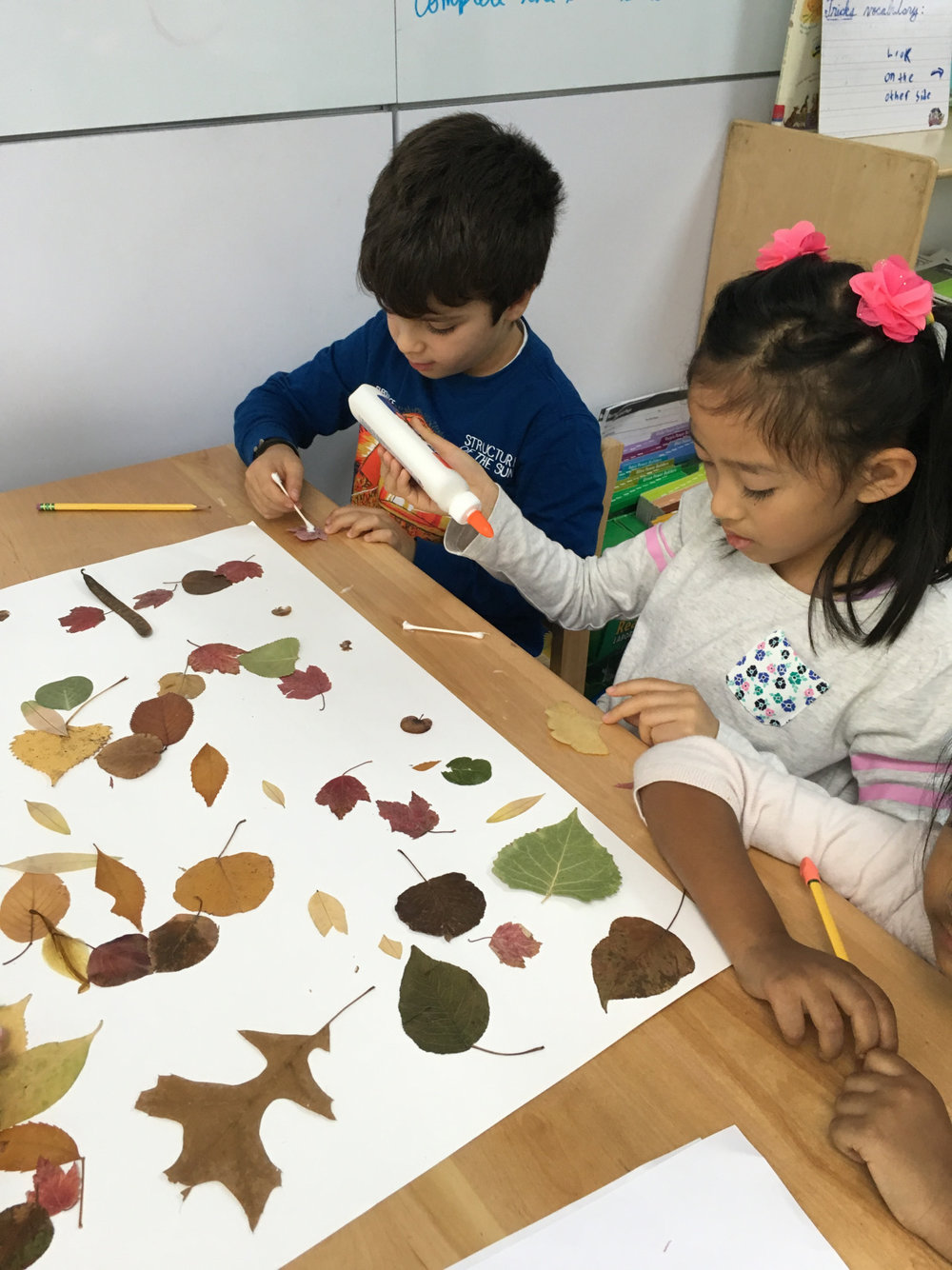 Using all of the leaves that they collected and pressed last school year, a group of Lower Elementary West students collaborated on making a leaf collage.