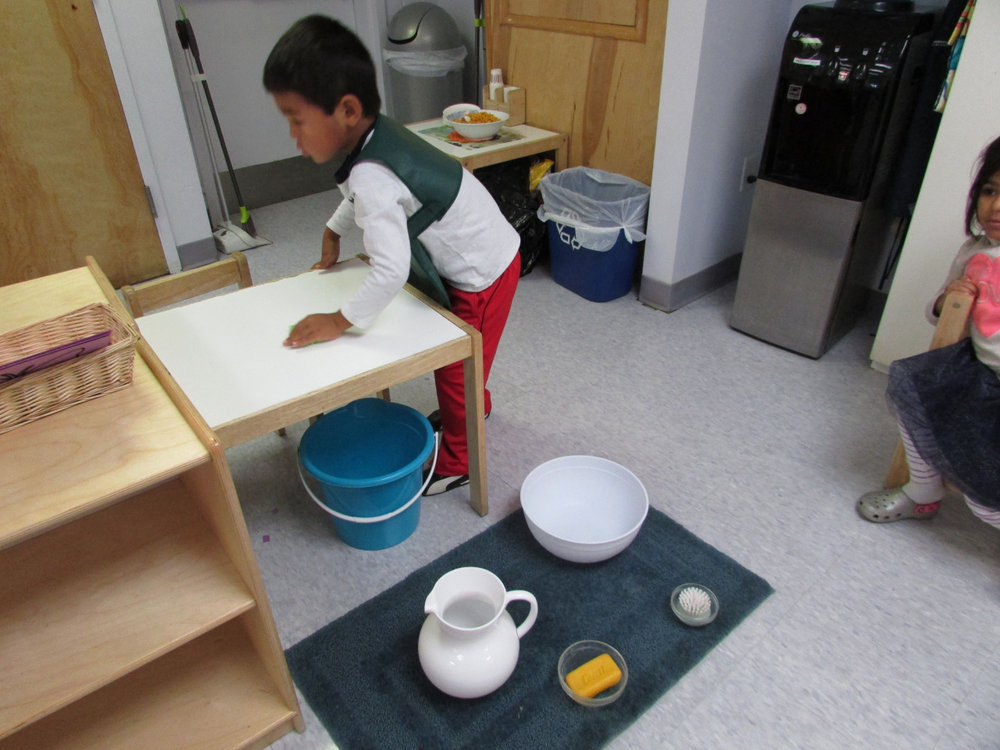 Table Scrubbing is a Practical Life work that helps to develop concentration, coordination and independence, and the Primary 3 students have fun doing it.