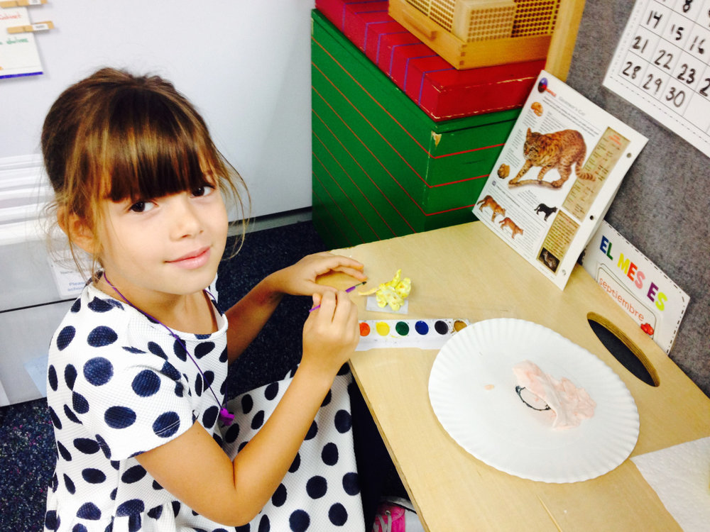 Animal Research is a very popular work in the Lower Elementary West classroom.  The students conduct research independently based on their interests. After they complete the written portion of their research and have it checked by a teacher, they continue on to the second part of the work: creating a model of the chosen animal through a variety of media.  This first grade student chose to use Model Magic to create her animal.