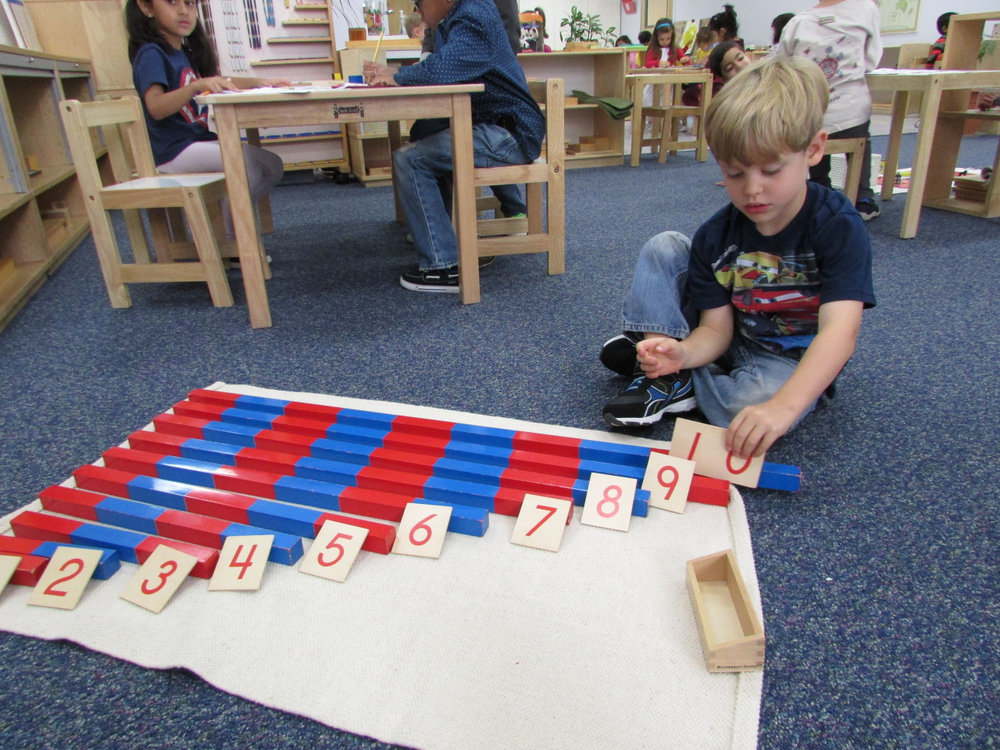 Young Primary 3 students learn through their senses.  The Number Rods are a hands on material used to help a student slow down, count and associate numbers with quantities.