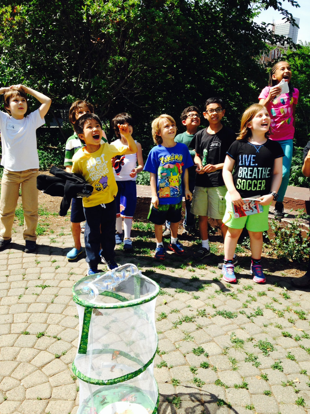 The Lower Elementary West students wrote their observations about the life cycle of the butterfly. Then they were excited to release their butterflies into the wild.