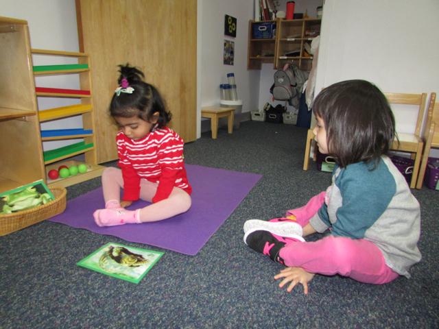 T2 yoga 2.jpg