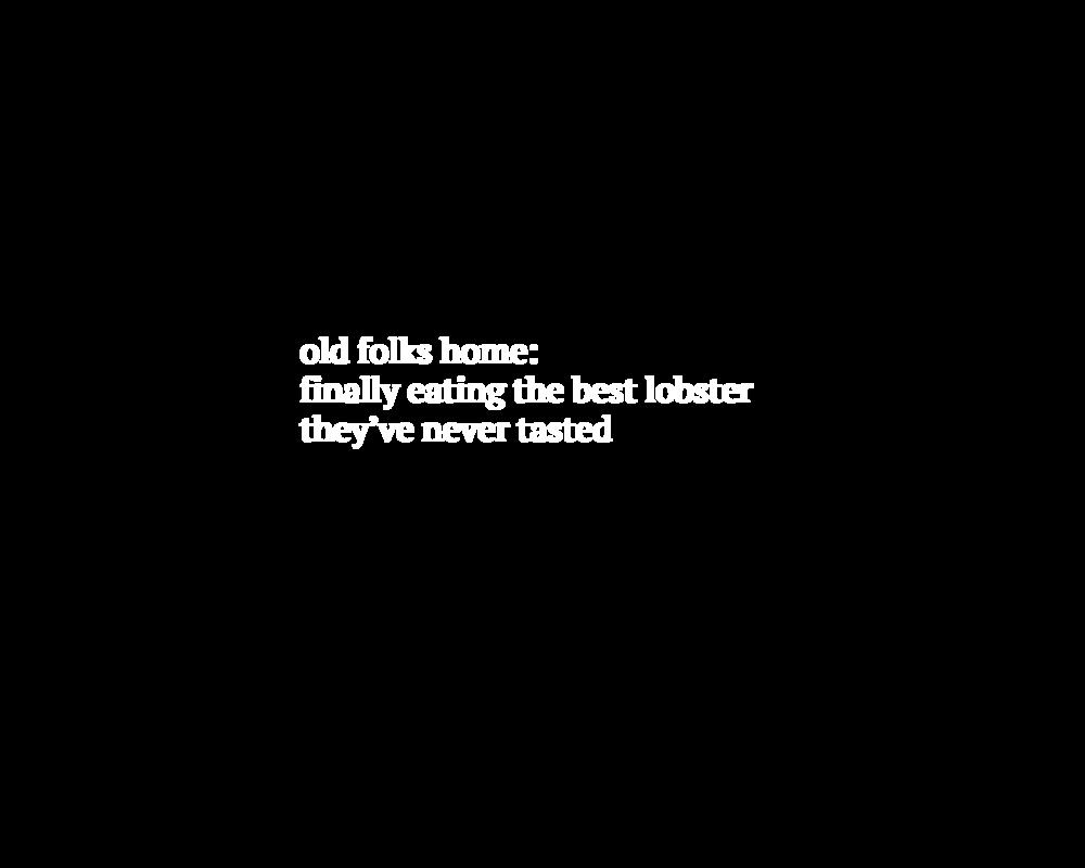 haiku19.png