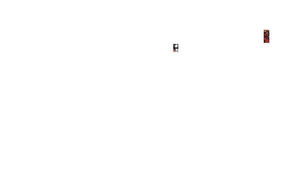 Book3_RR46.jpg