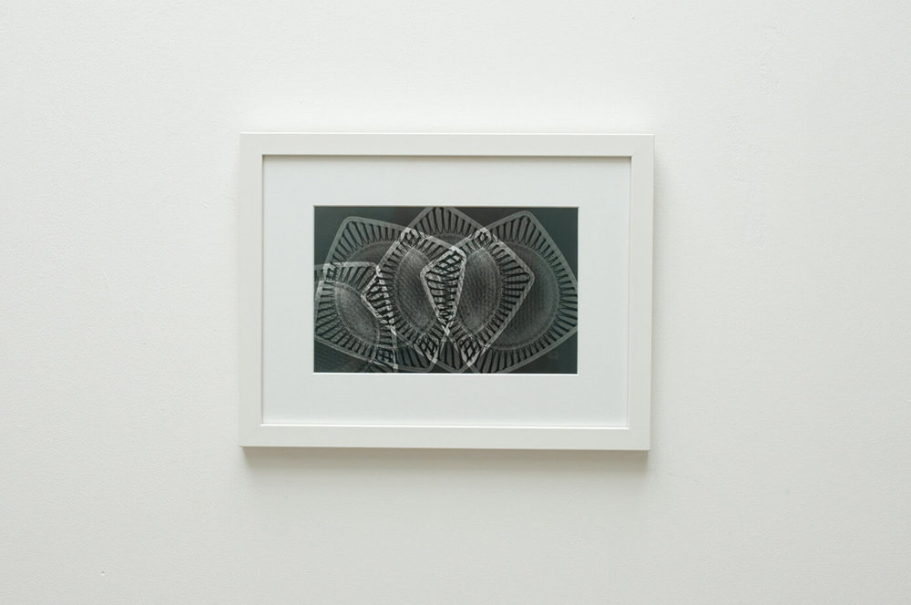Inner structure No III;2016 digital resin print, edition of 5 28 x 37cm framed; £550 20.7 x 25.8cm unframed; £430