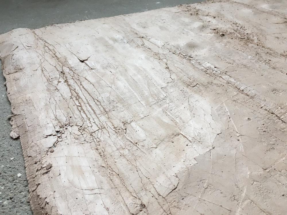 Tissue; detail plaster, nylon monofilament, rayon and varnish 82 x 100cm  POA