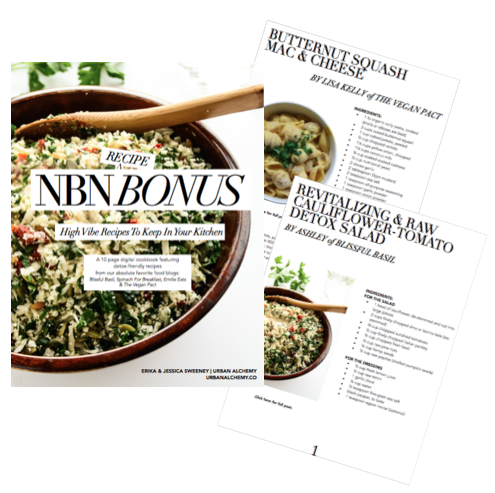 nbn recipe bonus book