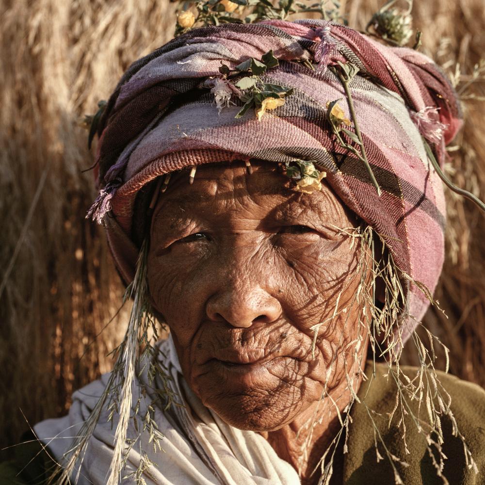 Central Kalahari Desert.