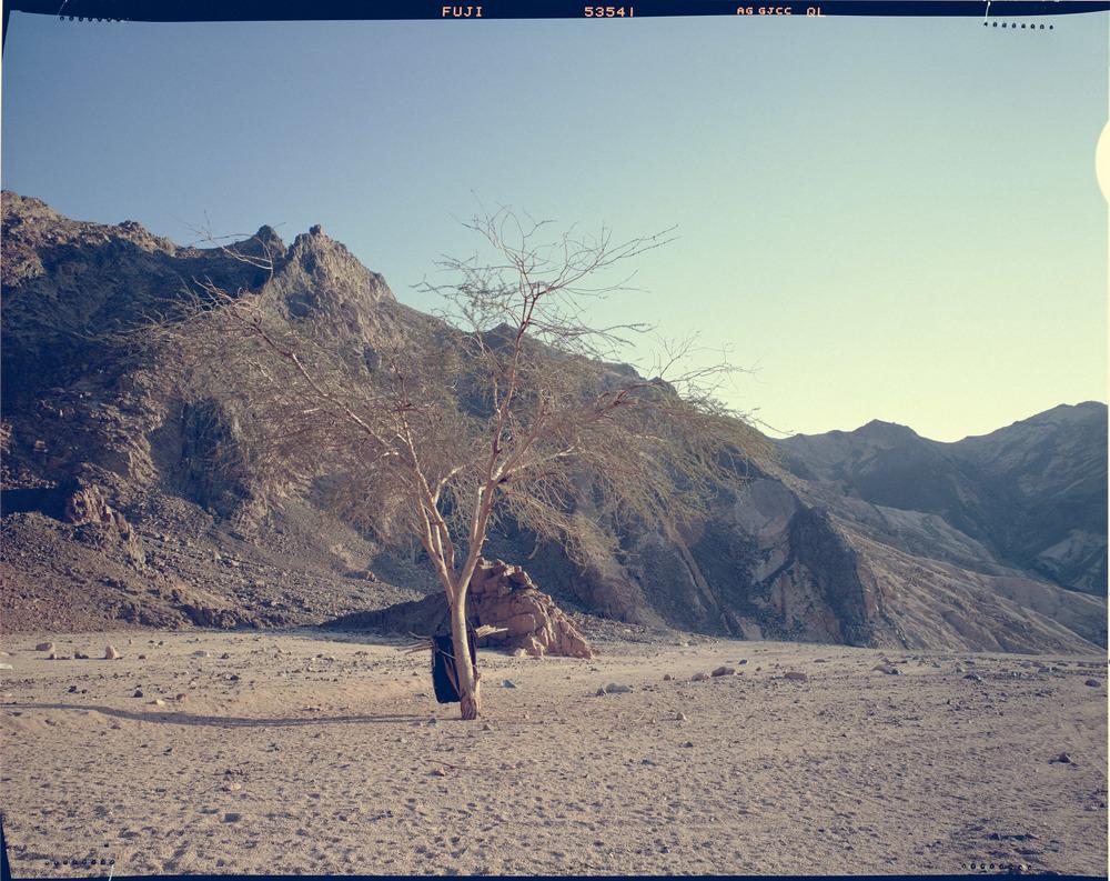 Achmed's Tent, Sinai Desert.
