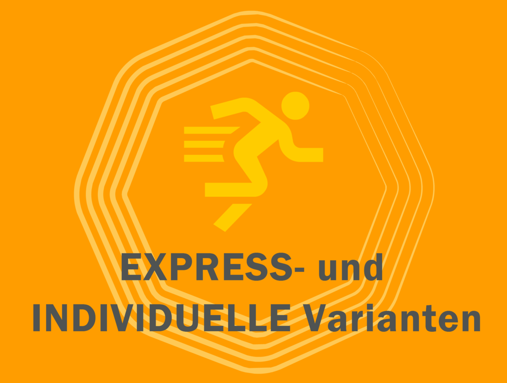logo Express Indv.png