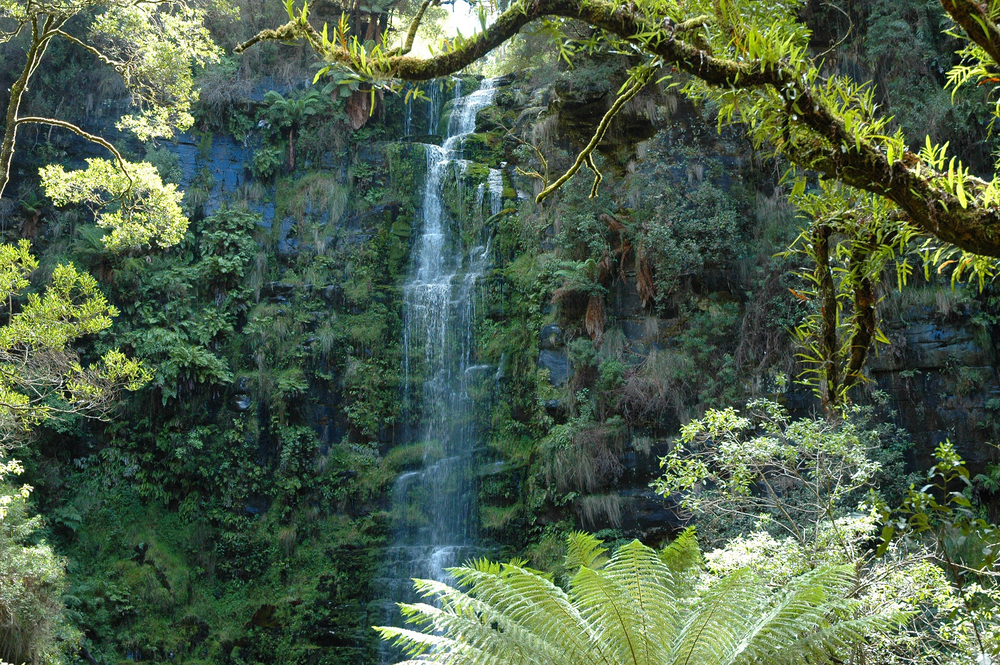 Cape Otway Ranges