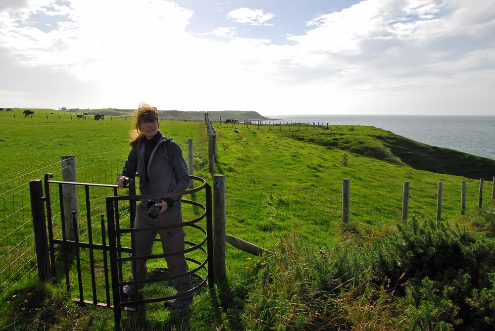 zwischen wiesen und wellen - Der Wales Coast Path