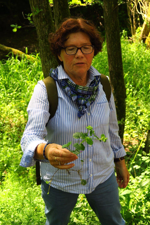 Kräuterpädagogin Gisela Reineke