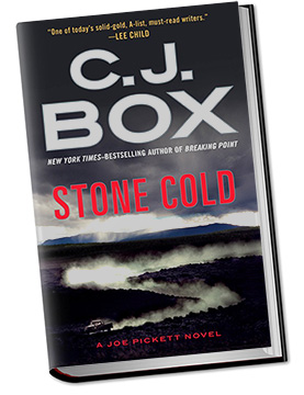stone cold book summary