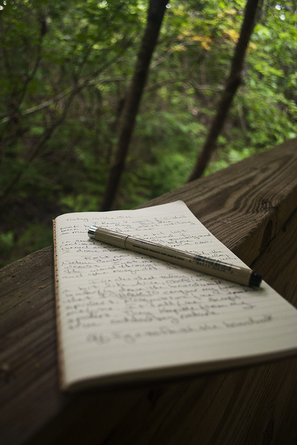 Grab your journal.
