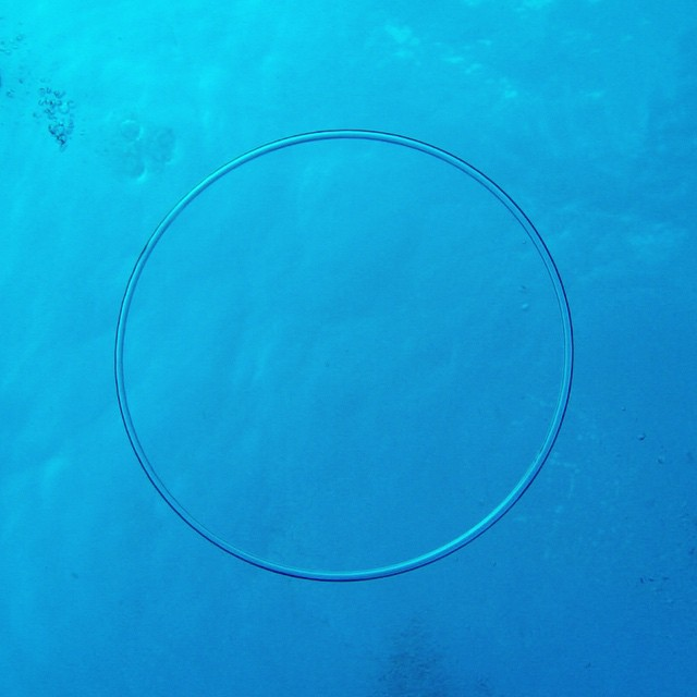 Bubble ring by Dive Master Luke Mason (at Kona Diving Company)