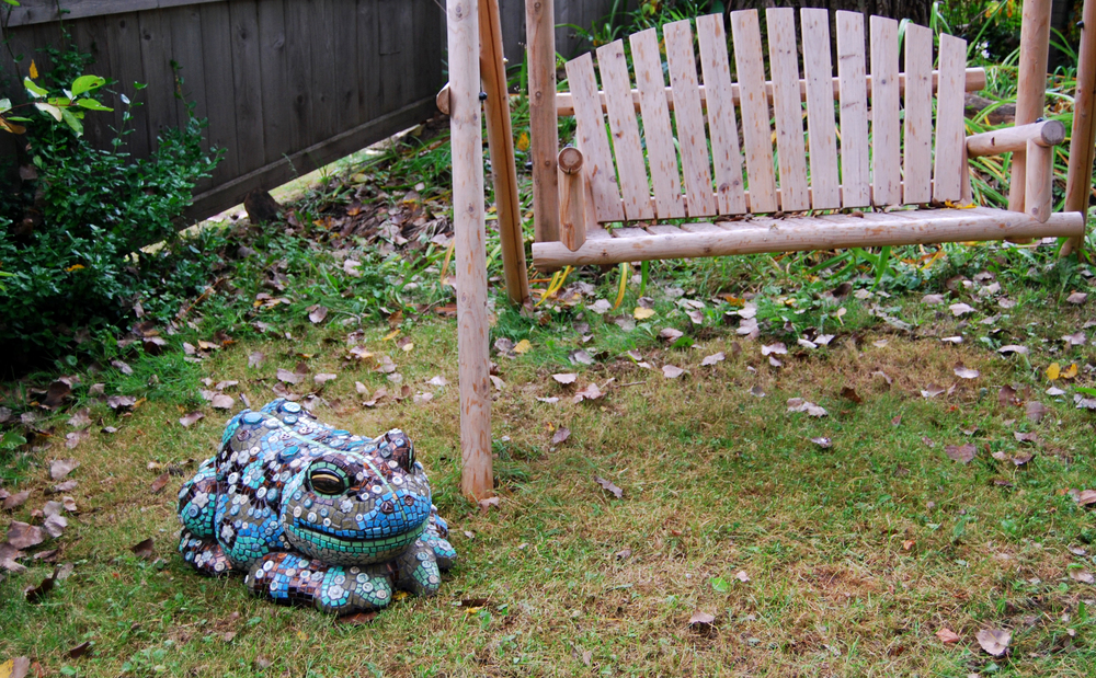 American Peace Toad in Garden.jpg